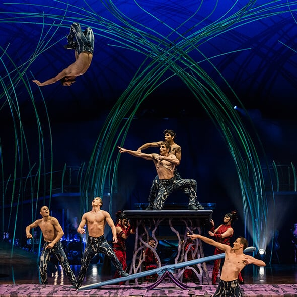 The teeterboard act from Amaluna